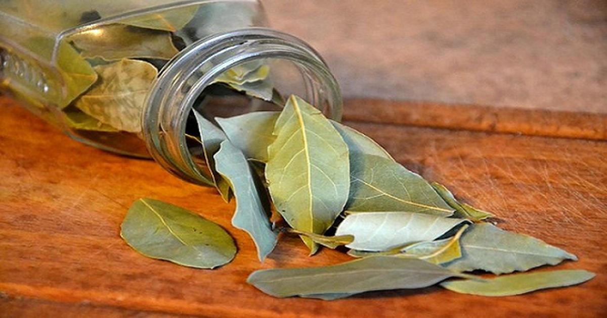 30-burn-bay-leaves-fb-4251900