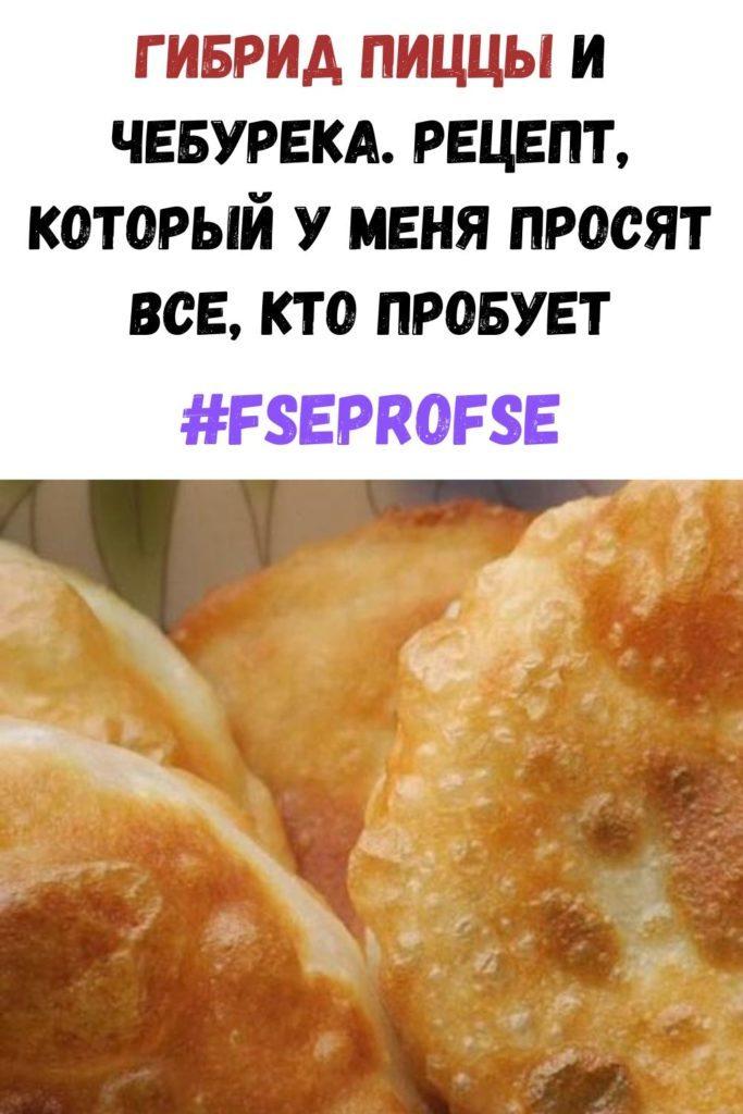 gibrid-pitstsy-i-chebureka-retsept-kotoryy-u-menya-prosyat-vse-kto-probuet-683x1024-6374256