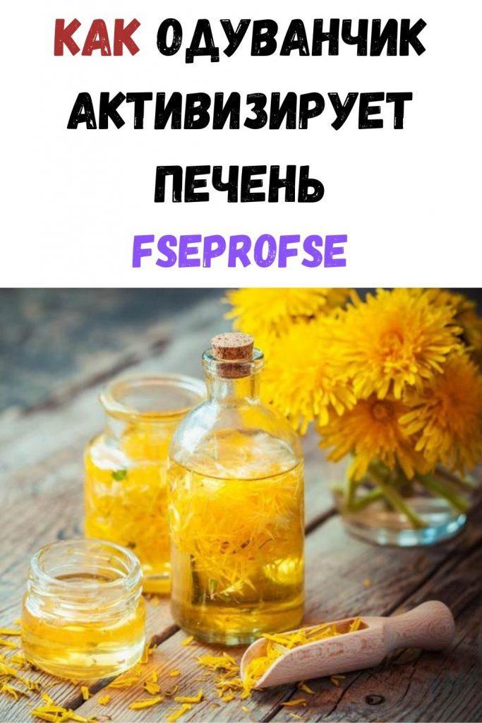 kak-oduvanchik-aktiviziruet-pechen-683x1024-6256722