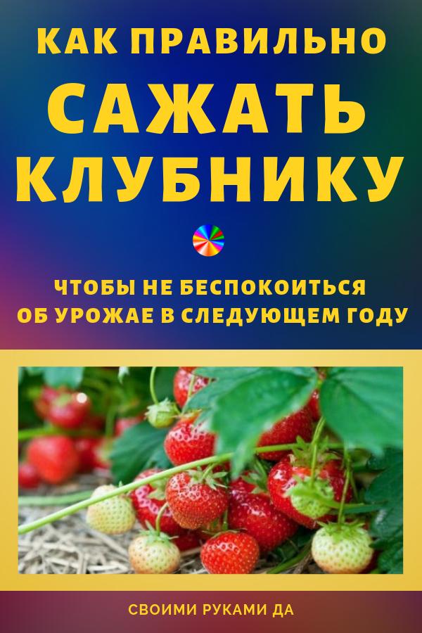 krasota-bumaga-kopiya-kopiya-kopiya3-6007936