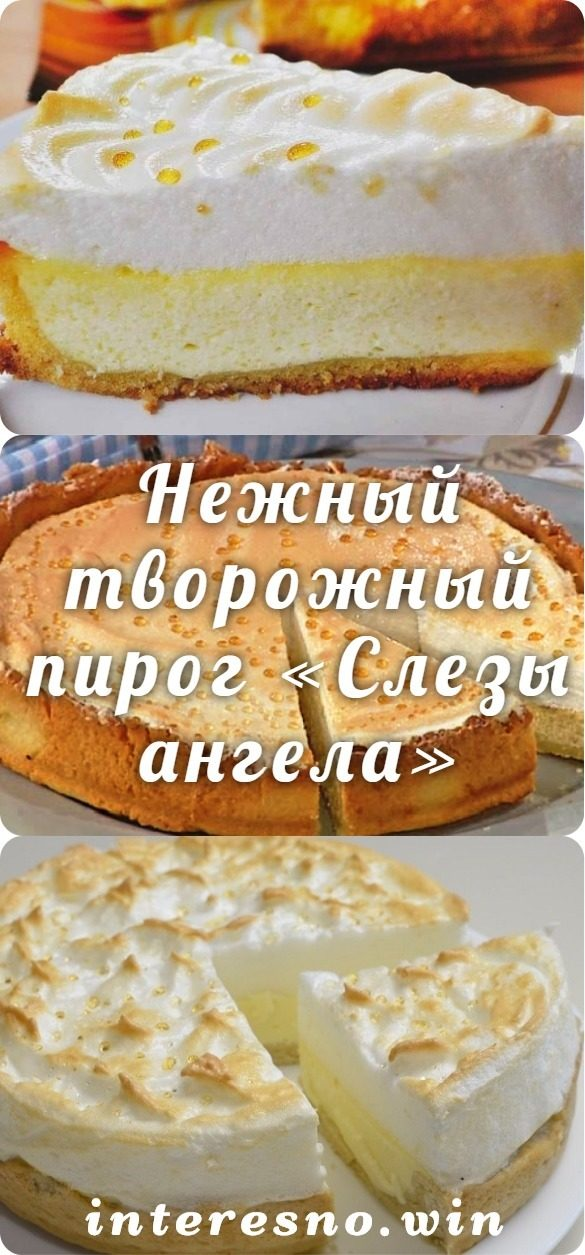 nezhnyj-tvorozhnyj-pirog-slezy-angela-7096019